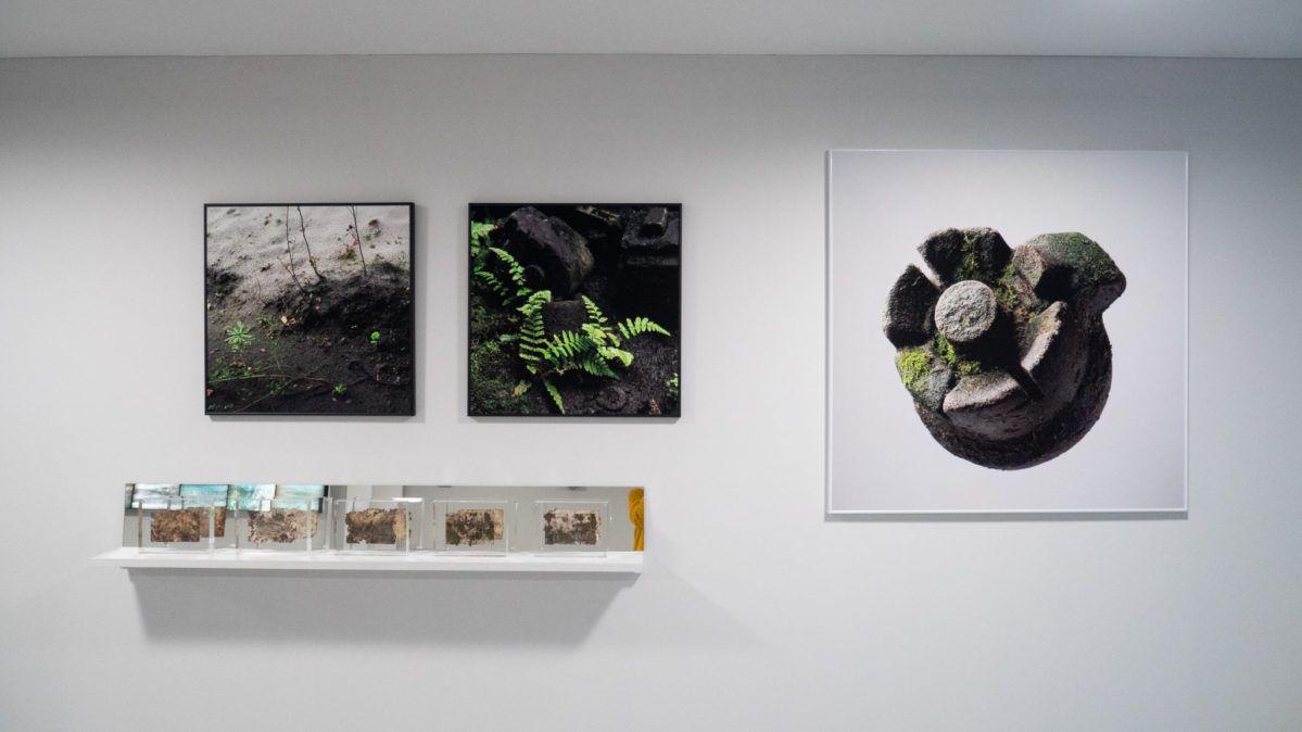 Photographies série Tiers paysage Biennale de l'Image Tangible